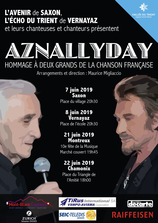 Affiche Aznallyday